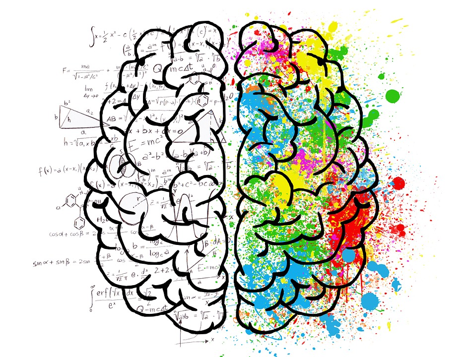 hemisferios_cerebrales